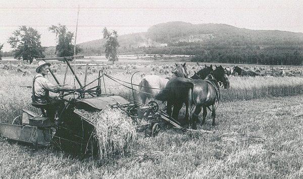 Travaux Agricoles