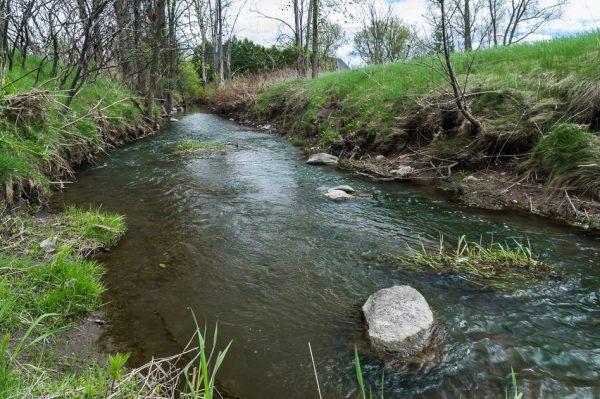 Le ruisseau des Frères