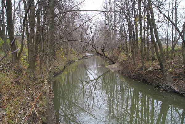 Le ruisseau Massé